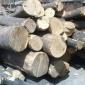 厂家批发白椿木.白杨木烘干板材,整平   ,防虫防腐.板材加工定